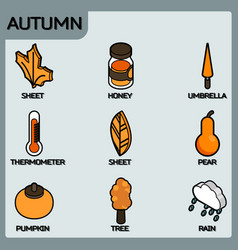 autumn color outline isometric icons vector image