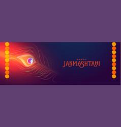 Beautiful happy janmastami festival banner vector