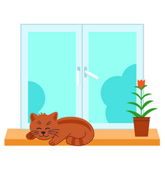 Cute pet cat is sleeps in windowflat design vector