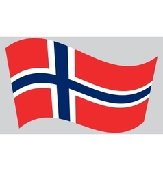 Flag of Norway waving vector image