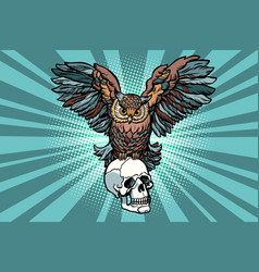 Owl and human skull vector