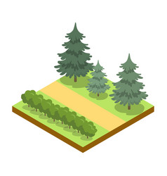 park alley with bushes and pines isometric 3d icon vector image