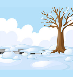 scene with road covered with snow vector image