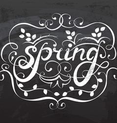 spring lettering calligraphy vector image