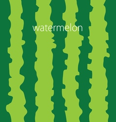 Watermelon color background vector