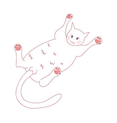 white cute cat laying on back vector image