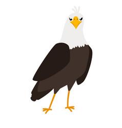 Eagle cartoon bird icon vector