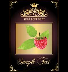 chocolate raspberry realistic vector image vector image