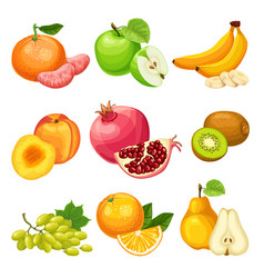 cartoon healthy fruits set vector image