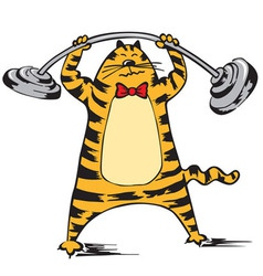 Cat raises the barbell vector image