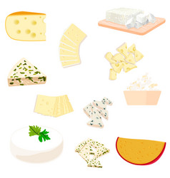 Colorful of cheese vector