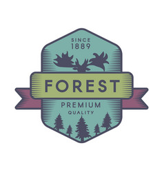 forest color logo template vector image