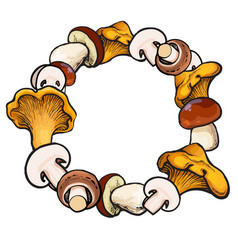 round frame of sketch edible mushrooms with place vector image