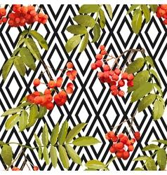 Autumn rowan berry background seamless pattern vector