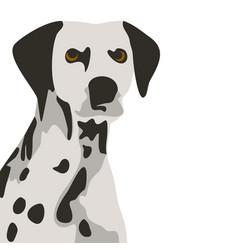dalmatian dog simple vector image vector image