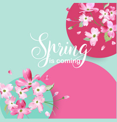 floral spring graphic design with cherry blossom vector image vector image