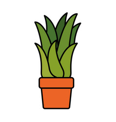 White background with corn plant in flower pot vector