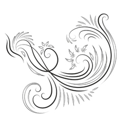 Classical ink swirl ornament vector image