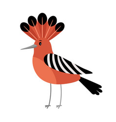 Hoopoe cartoon bird icon vector