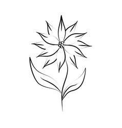 minimalist tattoo flower line art herb and leaves vector image