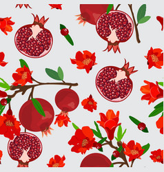 pomegranate fruits seamless pattern with flower vector image