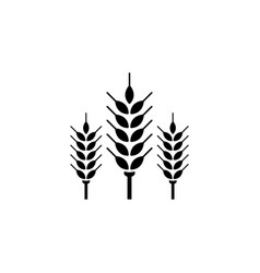 spikelet flat icon vector image