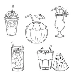 summer drinks vector image