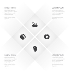 icon food set of tangerine cranberry vector image vector image