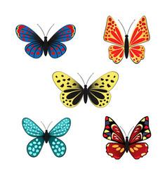 set of butterflies vector image vector image