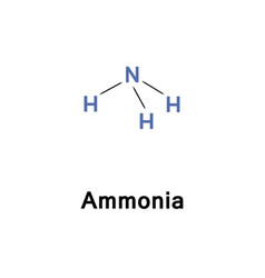 ammonia or azane nh3 vector image