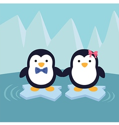 Penguin Couple in Ice Theme Background vector image