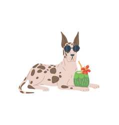 Dog breed great dane in sunglasses with tropic vector