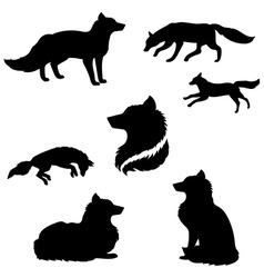FoxSet vector image