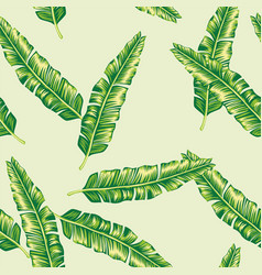 green banana leaves seamless lime background vector image