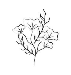 minimalist tattoo flower herb and leaves foliage vector image
