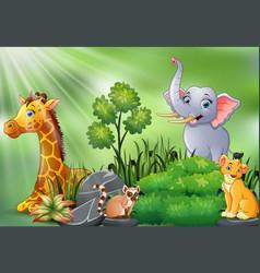 nature scene with wild animals cartoon vector image