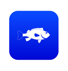 Sea bass fish icon digital blue vector