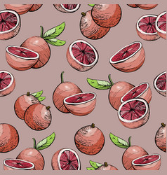 seamless background with citrus fruit grapefruit vector image