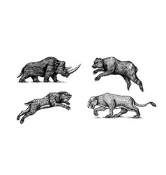 woolly rhinoceros cave bear and lion panthera vector image