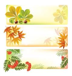 Horizontal autumn banners vector image