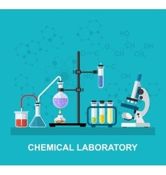 Chemical glassware laboratory vector image vector image