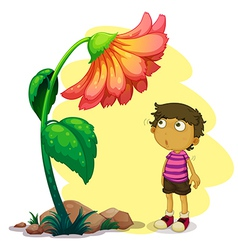 A little boy looking at the giant flower vector