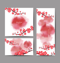 Cherry blossom collection greeting cards vector