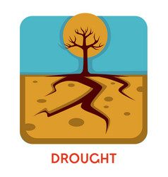 Drought natural disaster hot weather dry earth vector