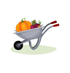 gray garden cart with ripe vegetables metal vector image