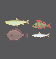 Isolated river fish set of freshwater sea cartoon vector