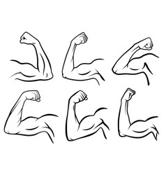 powerful hand muscle strong arm muscles hard vector image