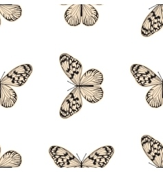 Seamless pattern with vintage white butterfly vector