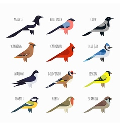 Set of Colorful bird icons Cardinal magpie sparrow vector