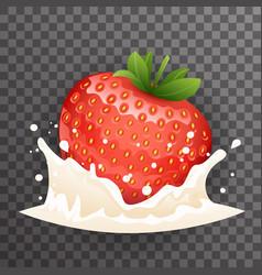 strawberry milk cream curl splash drops fruit vector image